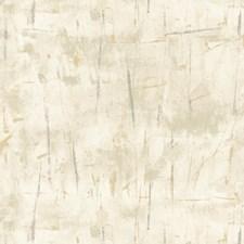 Ivory/Grey/Gold Modern Wallcovering by Kravet Wallpaper