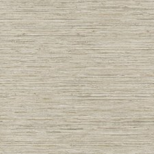 Cream/Beige/Light Taupe Faux Grasscloth Wallcovering by York