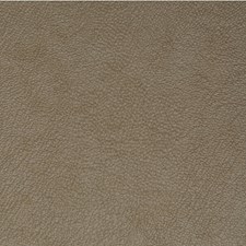 Lustre Solid Wallcovering by Winfield Thybony