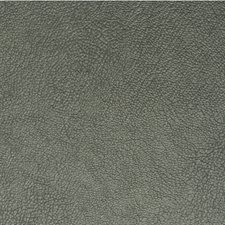 Juniper Solid Wallcovering by Winfield Thybony