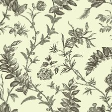 Cream/Grey/Black Toile Wallcovering by York