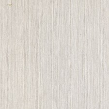 Cafe Au Lait Wallcovering by Scalamandre Wallpaper