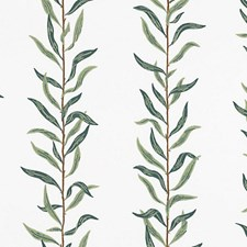 Cream/Dark Green Wallcovering by Scalamandre Wallpaper