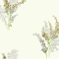 White/Taupe/Grey Floral Medium Wallcovering by York