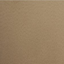 Buffalop Solid Wallcovering by Winfield Thybony